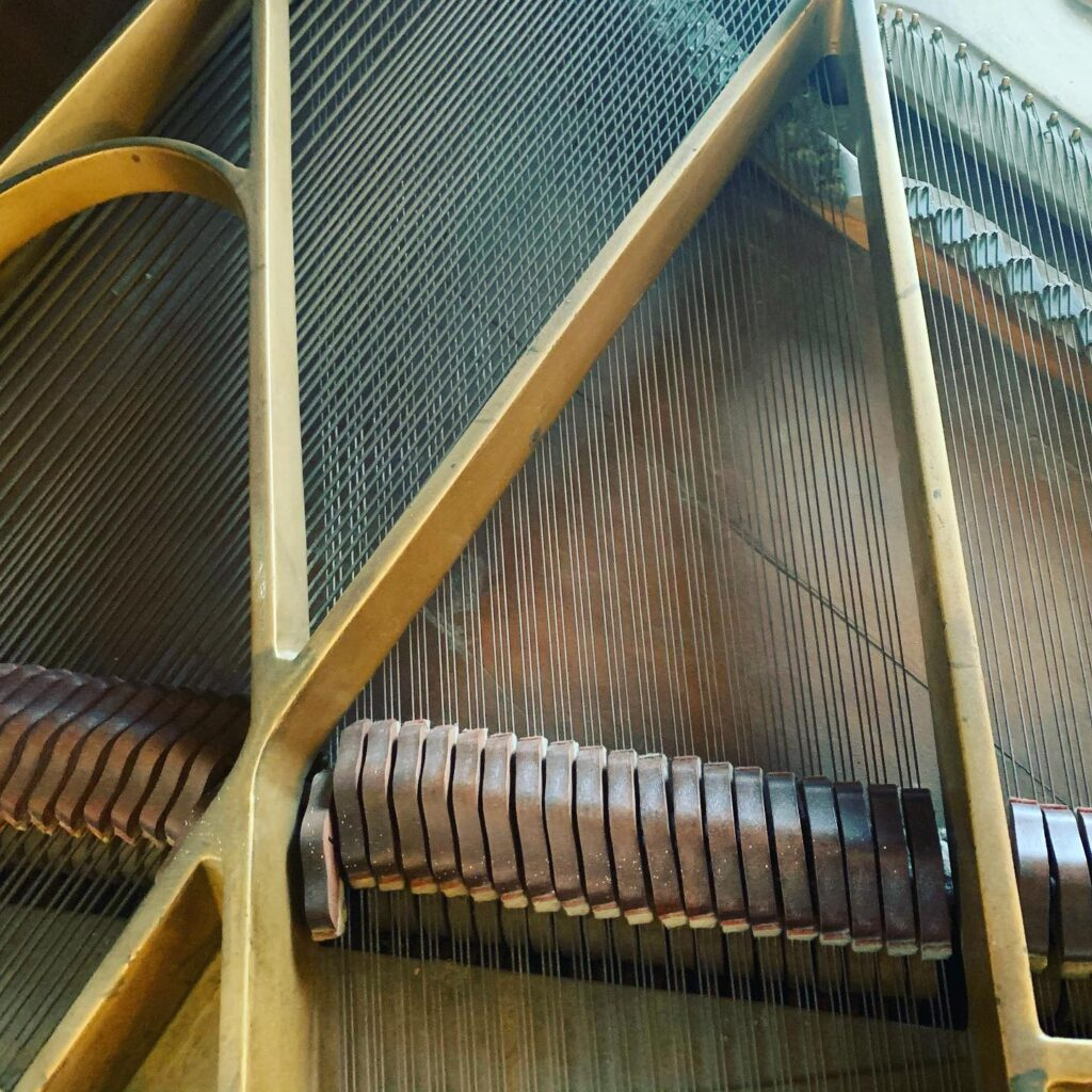 Piano cleaning service help keep your piano healthy and sounding great. this is an after shot.